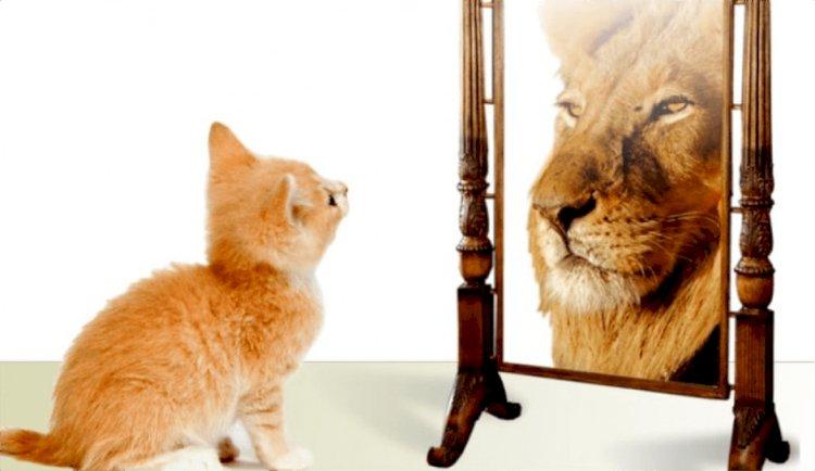 Yalancı Ayna